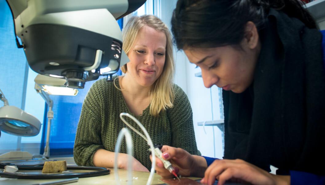Arbeidsmarkedet er vanskeligere for realistene enn for ingeniørene viser ny undersøkelse fra NIFU. Foto: Skjalg Bøhmer Vold
