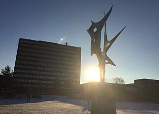 Universitetet i Oslo søker ny kommunikasjonsdirektør