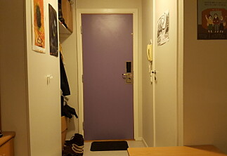 Jeg elsker denne døra
