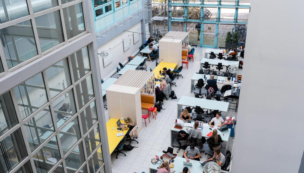 Studenter etterspør læringsrom, der de kan arbeide individuelt, men også være del av et sosialt miljø, går det fram av rapporten om campusutforming som Kunnskapsdepartementet har bestilt. Her fra NTNU. Foot: Skjalg Bøhmer Vold