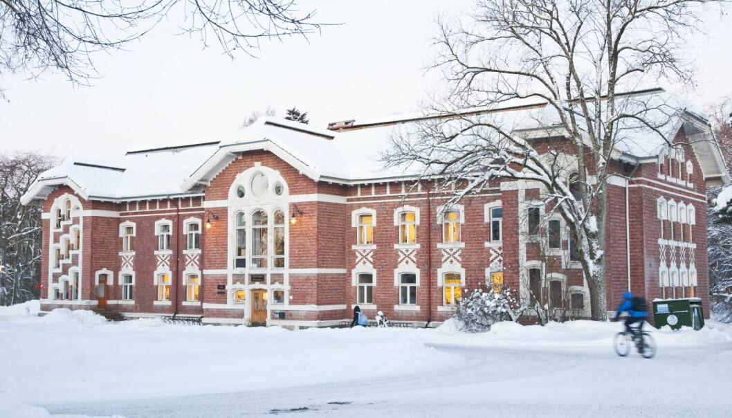 NMBU er det eneste norske universitetet som er med på rangeringen over de 100 universitetene i verden som har færrest antall studenter per faglig ansatte. Foto: NMBU