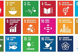 Forskersamfunnets rolle i arbeid for bærekraftig utvikling
