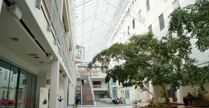 Sender kunstfagene til Tromsø museum