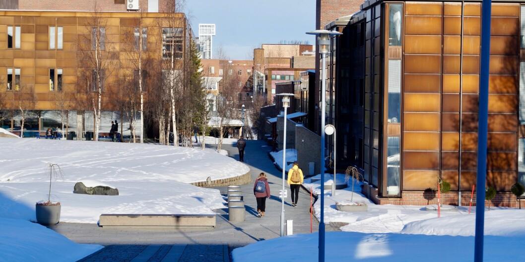 Mannen jobbet på IT-tjenesten ved UiT Norges arktiske universitet i tre år mens snikfiliming foregikk. I 2014 ble han tatt på fersken - først sist uke kom saken opp for retten. Foto: UiT