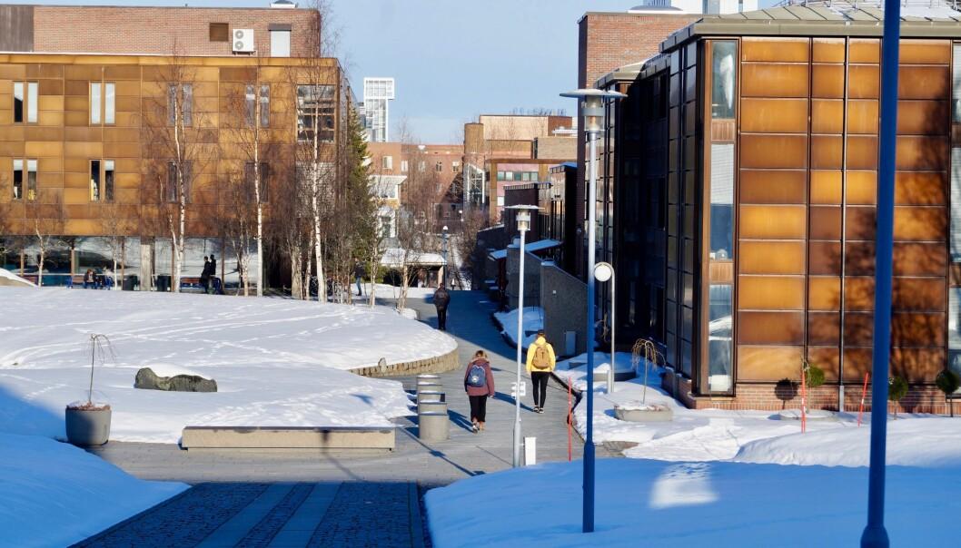 UiT Norges arktiske universitet. Foto: UiT