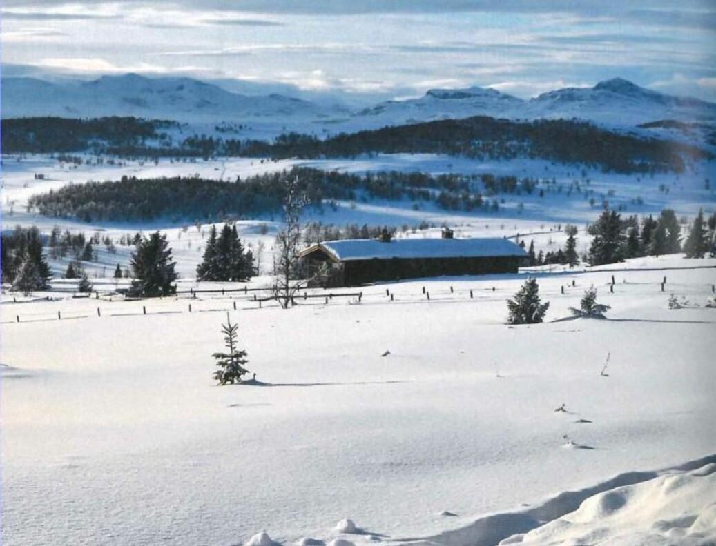 Gode skiforhold ved Svein Stølens hytte. Foto: Svein Stølen