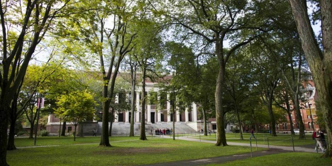 Harvard er på topp i verden når det gjelder omdømme, ifølge ranking fra Times Higher Education. Foto: Harvard University