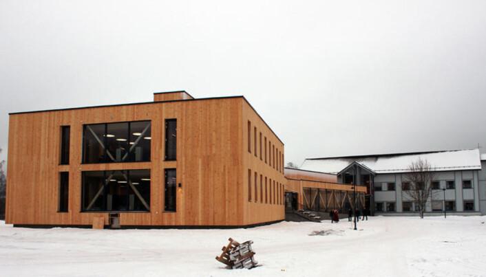 Campus Evenstad har et av verdens mest miljøvennlige campusbygg, ifølge Høgskolen i Innlandet. Foto: HiNN
