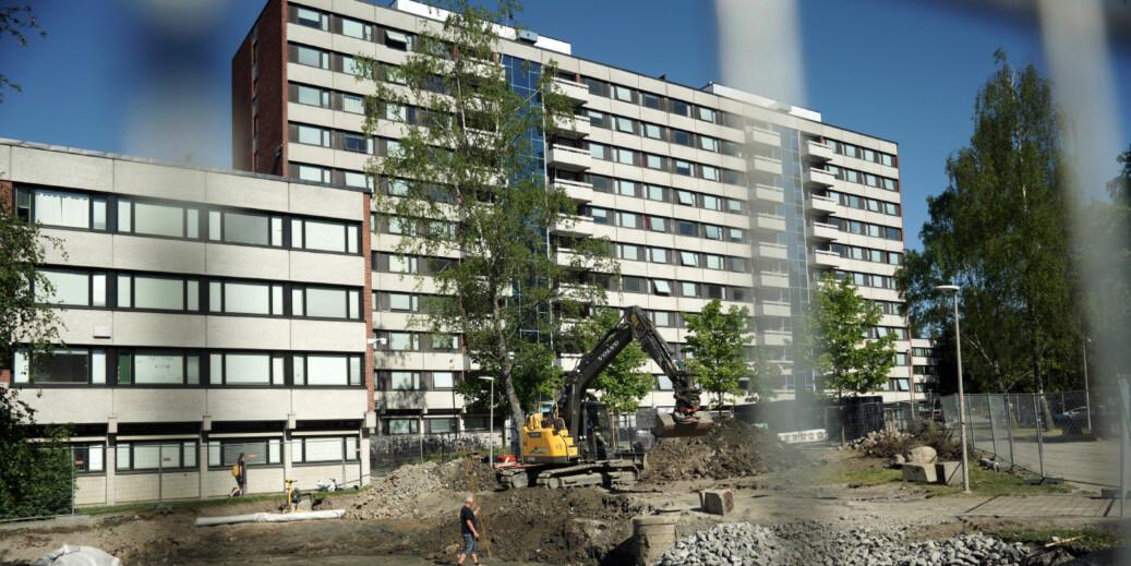 Kun noen få studentsamskipnader landet over har studentboliger til mer enn 20 prosent av studentene. Her fra Kringsjå studentby i Oslo. Foto: Ketil Blom Haugstulen