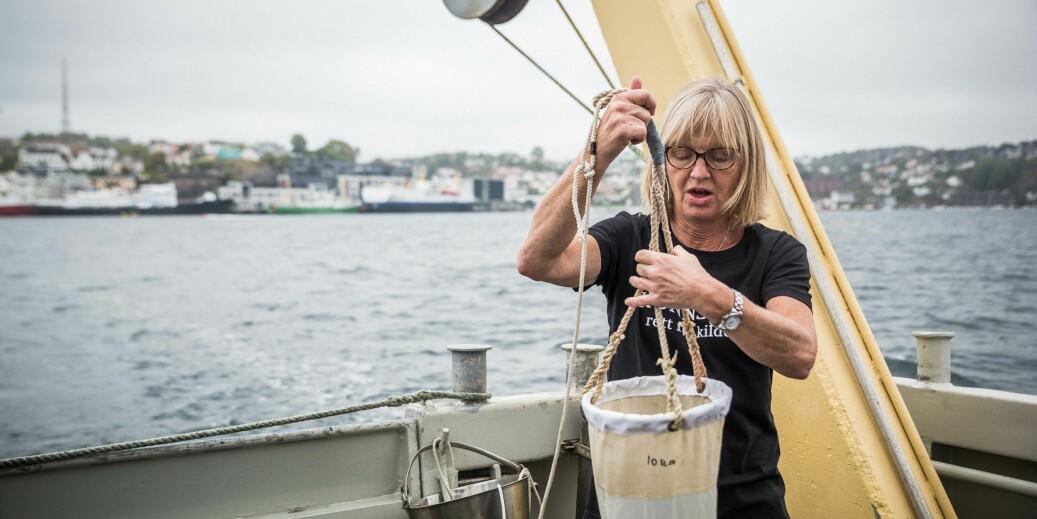 Bente Edvardsen er professor i marinbiologi på Universitetet i Oslo. Her sjekker hun plankton utenfor Arendal. Foto: Siri Øverland Eriksen