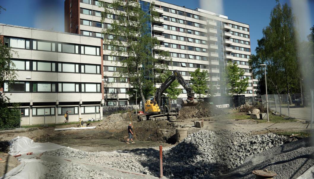 Byggestart for nye boliger på Kringsjå studentby. Foto: Ketil Blom Haugstulen