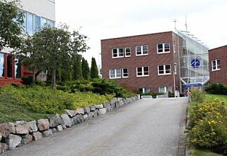 Nytt styre ved Høgskolen i Molde