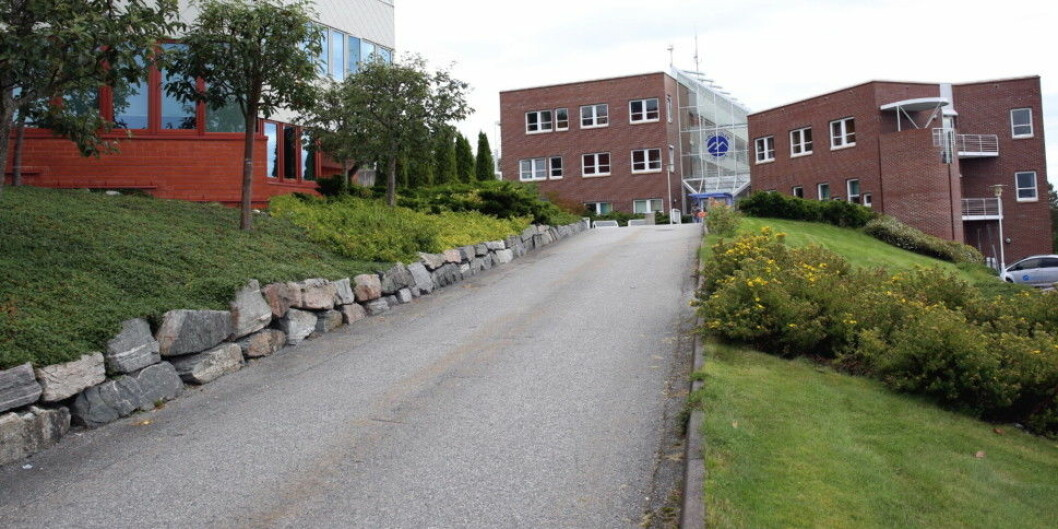 Høgskolen i Molde. Foto: Arild J. Waagbø