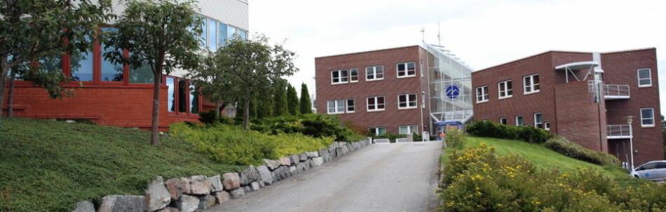 Høgskolen i Molde har fått nytt styre, som overtar 1. august. Foto: Arild J. Waagbø