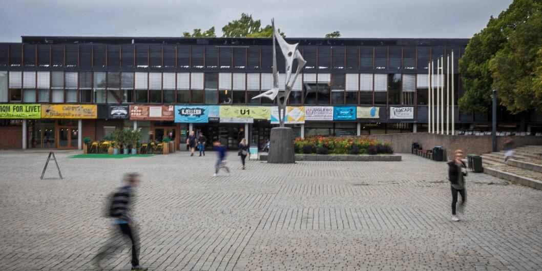 Vi er en studentforening rettet mot studenter i Oslo og Akershus med hovedsete på Universitetet i Oslo (UiO). Vi representerer kurdiske og ikke-kurdiske studenter ved høyere utdanningsinstitusjoner i Norge. Bildet er fra Blindern. Illustrasjonsfoto: Siri Øverland Eriksen