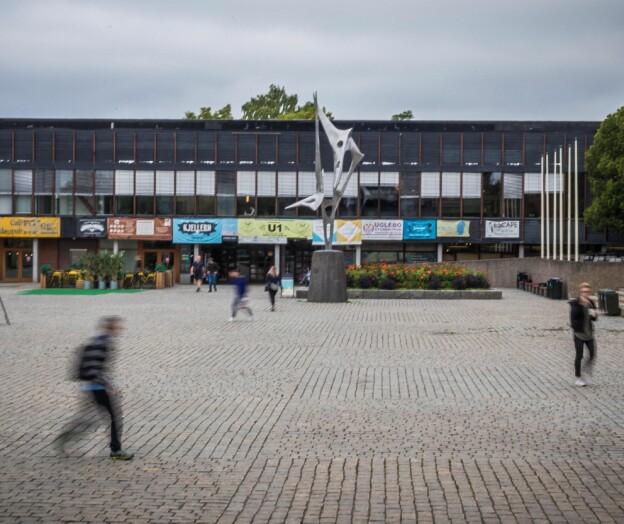 Uakseptabelt at Tyrkia skremmer kurdiske studenter i Norge