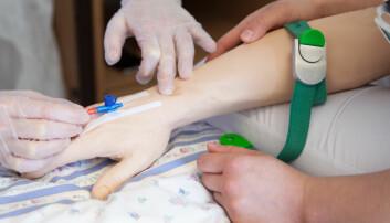 114 tomme studieplasser for sykepleiere: — Vi føler at ingen vil ta ansvar