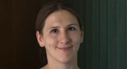 PRIO-forskere: Brekke svarer ikke på noen av spørsmålene vi stiller