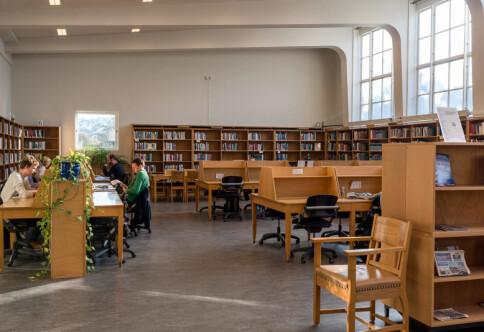 Kollegial ledelse av universiteter - en omstridt styringsform
