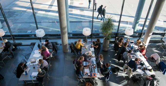 Campusovergripende studietilbud, en utfordring for høyere utdanning?