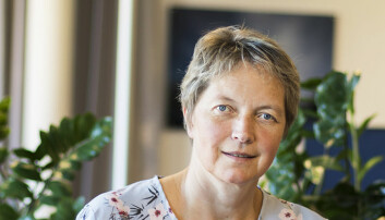 Rapport klar: Nord-rektor foreslår å gå fra ni til fem campuser