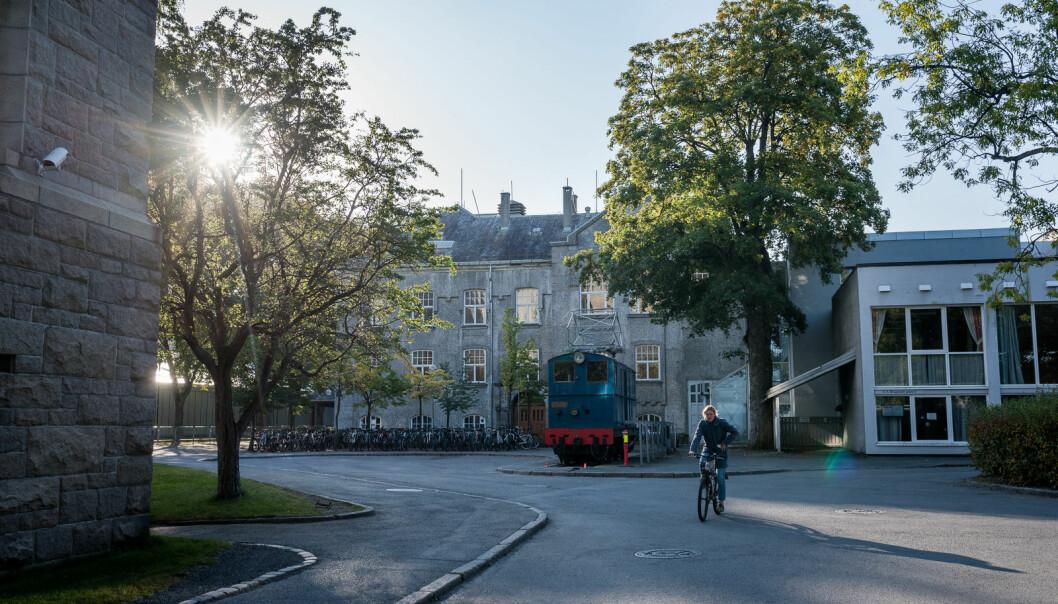 Skal man forstå universitetenes samlede bidrag til innovasjon og nyskaping, må vi ha indikatorer som favner bredere, skriver prorektor Toril A. Nagelhus Hernes ved NTNU. Foto: Skjalg Bøhmer Vold