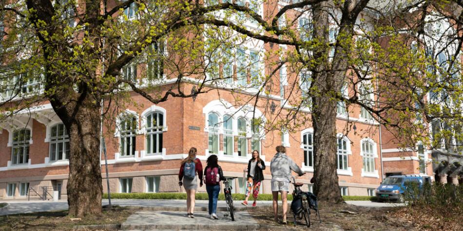 NMBU er et av universitetene der NOKUT fører tilsyn med kvalitetsarbeidet i 2019. Foto: Mina Ræge