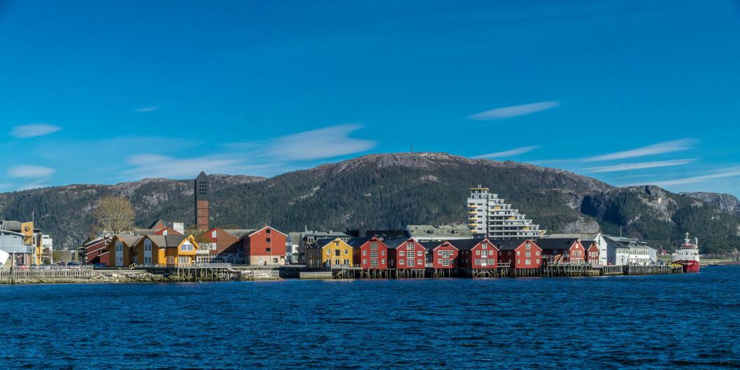 Det faglige miljøet som finnes i Namsos kommer ikke av seg selv og er bygget over lang tid. Her ligger noen av byggesteinene som er vanskelig å få på plass i en organisasjon; lavt sykefravær, engasjement, kollegial oppbakking, og evne - samt ikke minst vilje - til å tenke nytt, skriver stipendiat Hanne Leirbekk Mjøsund. Foto: Jechstra