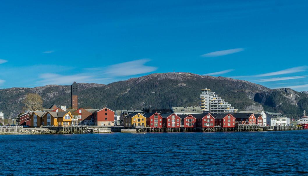En annerledes stillingsutlysning knyttet til campus Namsos, Nord universitet. Foto: Jechstra