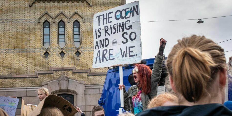 Vi står overfor en naturmangfold- og klimakrise, og utdanningssektoren må være sitt ansvar bevisst, skriver innsenderne. Foto: Siri Øverland Eriksen