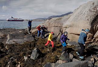 På ett år fløy ansatte på Nord over 3800 ganger mellom Trondheim og Bodø