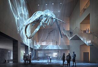 Universitetsmuseene er avgjørende for kunnskapssamfunnet