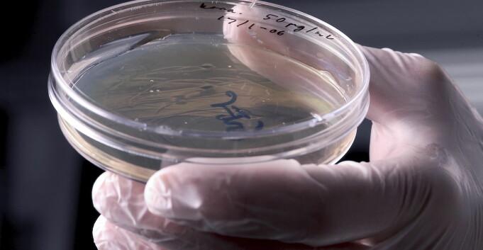 Bioingeniører i frontlinjen