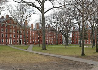Harvard og MIT saksøker Trump-administrasjonen