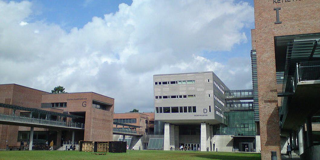 Universitetet i Agder. Foto: flickr.com/Henrik Jagels