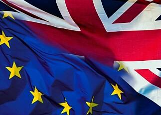 Britisk universitetsrektor om skjebnevalg: — Vi vet ikke hva brexit blir, så det er vanskelig å planlegge for framtiden