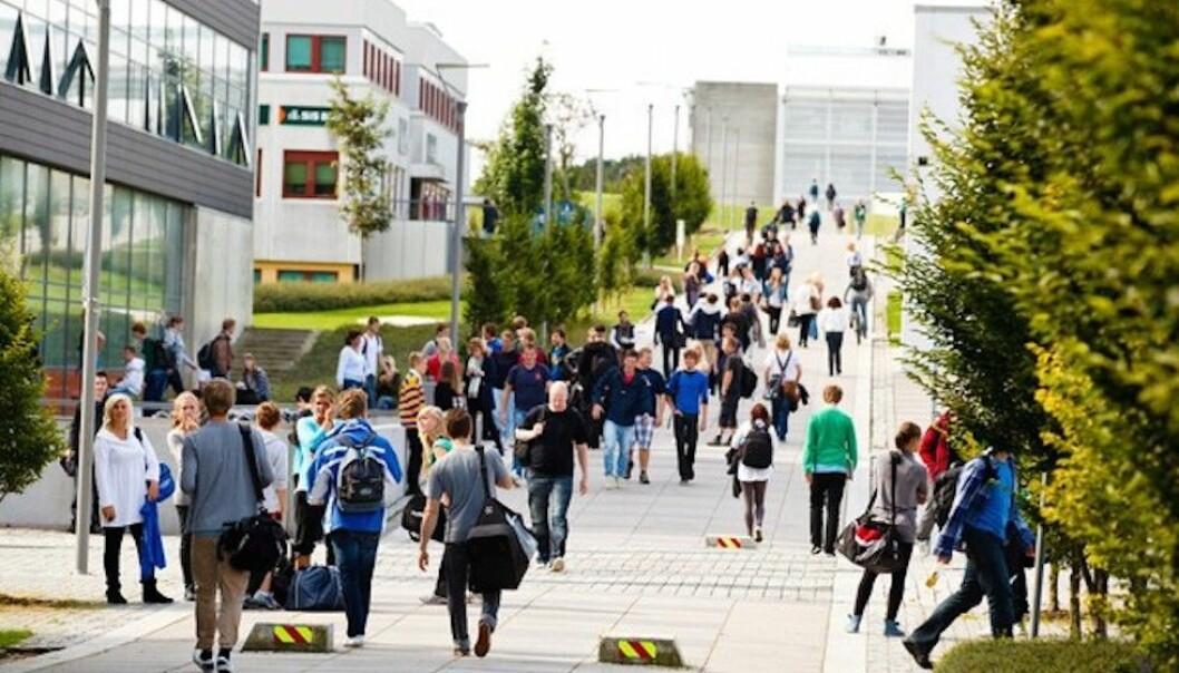 Omlag 70 studenter begynner hvert år på bachelorprogram i rettsvitenskap ved Universitetet i Stavanger. Nå ønsker både studenter og universitet å kunne tilby mastergrad i rettsvitenskap.