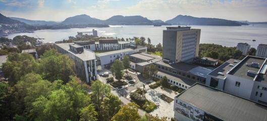 Aase Aamdal Lundgaard ny styreleder ved Norges Handelshøyskole