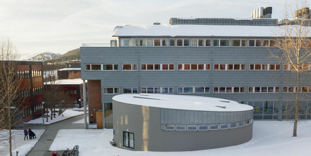 Professor Peter Arbo mener ansatt rektor er den rette veien å gå for UiT - Norges arktiske universitet, her representert ved Det helsevitenskapelige fakultet.