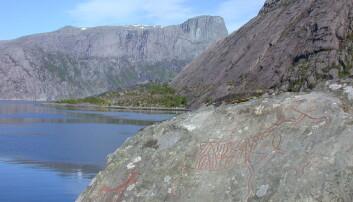 Eit av hjortemotiva som er å finna blant bergkunsten i Vingen.