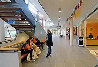 Norsk og nynorsk i lærarutdanninga