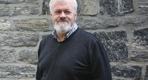 Ottar Grepstad: Kva gjekk gale på Høgskulen i Volda?