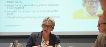 Følg styremøte på OsloMet direkte