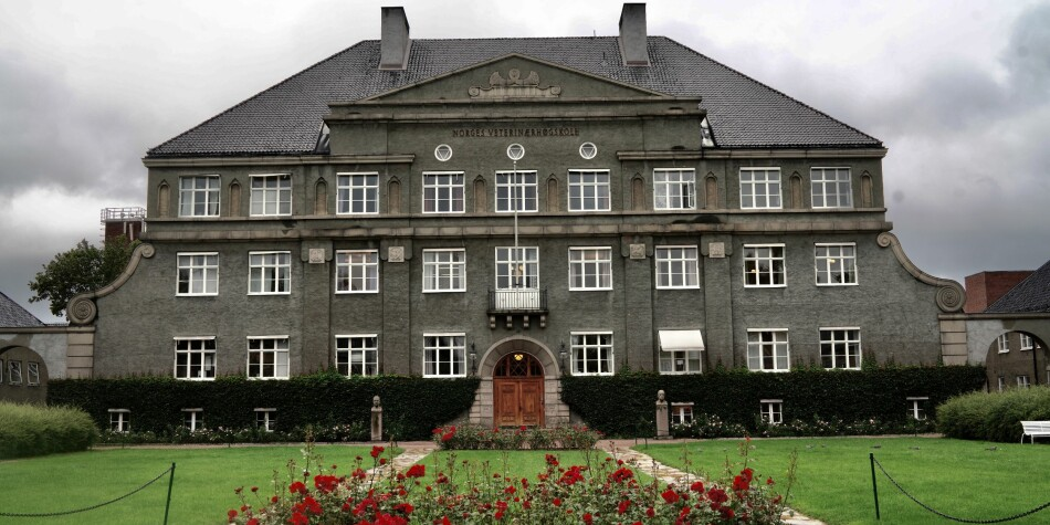 Hovudbygget vart sett opp i år 1820 og er ein av fleire bygg på tomta som er freda av Riksantikvaren. Foto: Ketil Blom Haugstulen