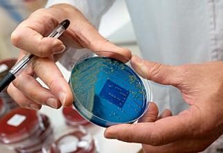 NRK: Norsk student smittet av koronaviruset i Italia
