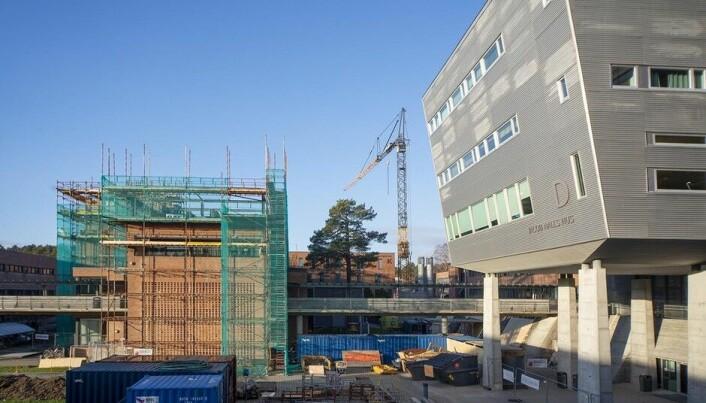 Flere av byggene ved Universitetet i Agder får nye toppetasjer. Foto: Saara Ojanen/UiA