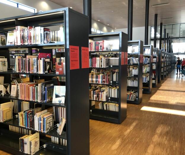 Norske forskere har produsert 1000 flere artikler i 2020 enn året før