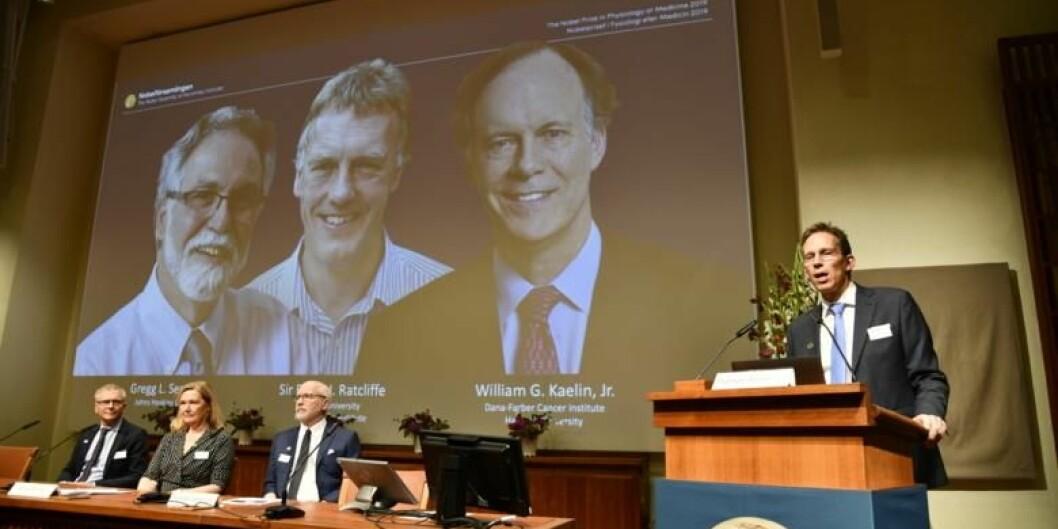 Fra offentliggjøringen av nobelprisen i medisin mandag 7. oktober på Karolinska Institutet. Foto: Erik Flyg, KI