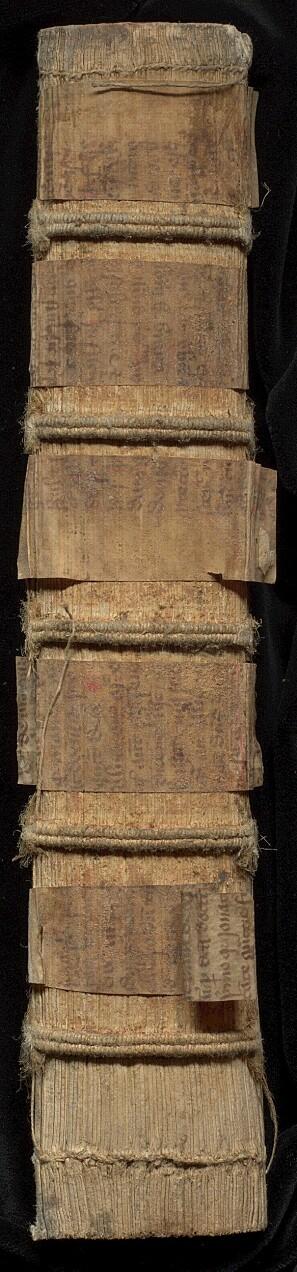 Latinske fragmenter brukt til forsterkning av bokryggen på Librar q24.