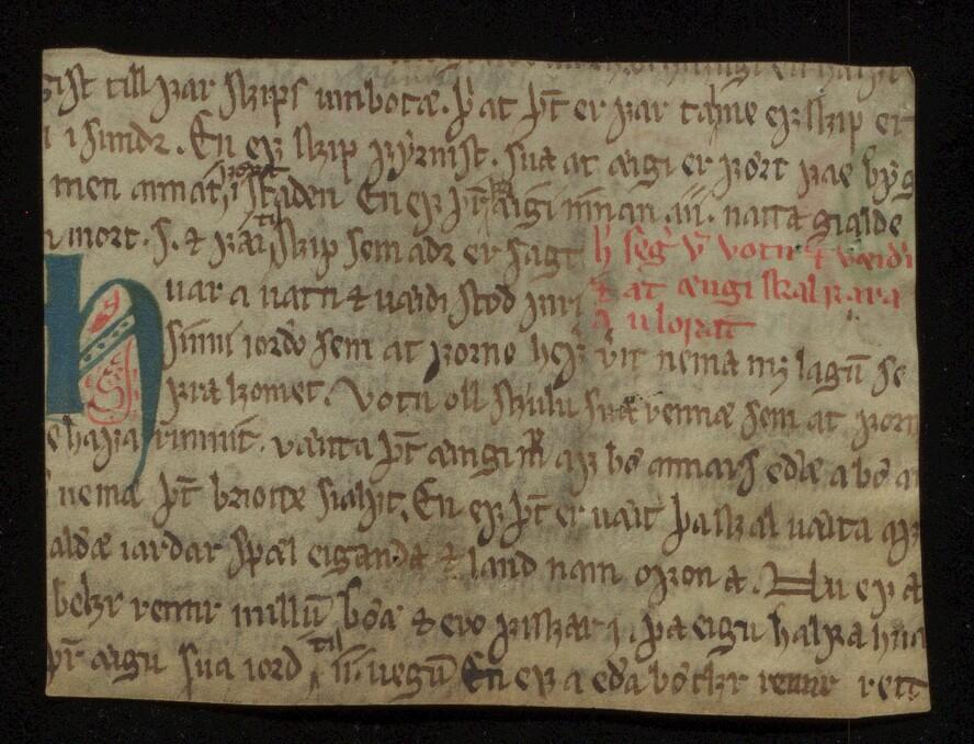 Verso-siden (baksiden) av ubb-ms-1836-1. Boken som fragmentet en gang har tilhørt har vært forholdsvis liten. Den flotte initialen h markerer starten på kap. 48 i Landsleiebolken.